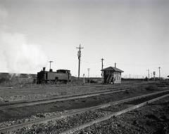 No. 10 going back to Brown's siding, 9 May 1984, Richmond Vale Railway (UON Library,University of Newcastle, Australia) Tags: railroadsrollingstockhistory railroadsnewsouthwaleshuntervalleyhistory coalminesandminingnewsouthwaleshuntervalley railroadsnewsouthwalesnewcastleregion jabrownfirmminerailroadtrainsnewsouthwales railroadsnewsouthwaleshistory richmondvalerailwaynsw brianrandrewscollection nsw australia brianrandrews bran362010tif