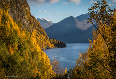 Fall (Askjell's Photo) Tags: andaneset autumn fjord mountain mountains mreogromsdal norway scenery sunnmre voldsfjord fall landscape nature
