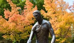 IMG_3358 (kale.kanaeholo) Tags: university portland fall leaves seasons nature oregon