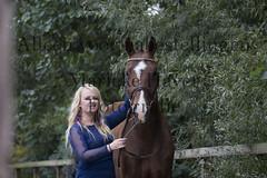 15 oktober 2016-215 (MZorro4) Tags: mariekehaverfotografie oudesluis schagen paardenfotografie portretfotos rijden wwwmariekehaverfotografienlpaarden