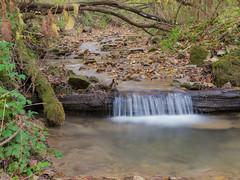 P1150139 (TallGrass-IA) Tags: edgewood iowa unitedstates us panasonic g6 1235 lumix micro43 microfourthirds waterfalls longexposure hiking outdoor nature moss