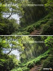 Pre / Post Pro (Andy Brandl (PhotonMix)) Tags: processing photonmix landscape bamboo example nature digitalphotography editing nikon hdr