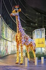 Germany-04374 - Legoland