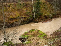 ylisjarvi08 (Kola-apsa) Tags: muurla salo ylisjrvi lunch koskenjoki river