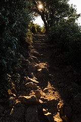 D73A8294 (NinSol) Tags: landscape bayarea explore mount tam tamalpias