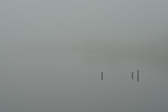 goldener Oktober??? (nirak68) Tags: schleswigholsteinkreisfreiehansestadtlbeck deutschland ger 292366 dunst nebel dalben wasser herbst wakenitz de9624 fluss river 2016ckarinslinsede lbeck mist fog