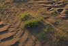2016_04_21_03267 (bencze82) Tags: canon eos 700d hungary magyarország galgahévíz hévízgyörk galgamente tavasz spring voigtländer apolanthar 90mm f35 slii