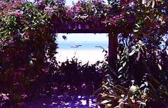 Munda - CE (Elisama Oliveira) Tags: beach sunlight outside thinkaboutlife worldthroughmyeyes worldthroughmylens nikon sky skyporn skycolors beautifulplace beautiful beautifulnature brazilianbeauty ceara mundau litoral