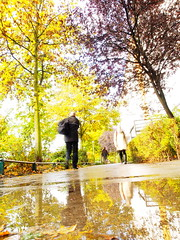 161019-0132 _Wuhle_SOOC1_ (Pixel-Cat) Tags: vorort suburb vorstadt platte plattenbau berlin hellersdorf herbst autumn regen rain downpour sonnenschein sunshine sonne sun olympus omd em5 sooc mzuiko1250mm13563iiez