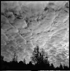 Clouds (Foide) Tags: pinhole lochkamera estenopeica sky clouds handheld