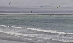 330 365 Windsurfers (friiskiwi) Tags: tahunanuibeach windsurfers wind sea surf