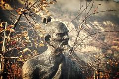 dans un verger... (bulbocode909) Tags: valais suisse saillon vergers statues pommes pommiers nature brume automne