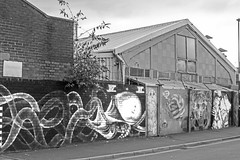 Wildlife of the Sheffield Backstreets monochrome (PDKImages) Tags: sheffield scenic cityscape city abandoned art beauty girl soul life glasses blue rays walls sheffieldart sheffieldstreetart barbedwire industrial backstreet