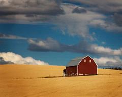 IMG_4027-591texture-2 (Marvin M) Tags: barn palouse red washington