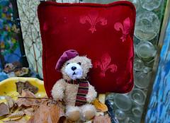Pierre le Bear (BKHagar *Kim*) Tags: bkhagar bear teddy teddybear animal toy pierre fleurdelis pillow cushion htbt outdoor leaves sitting scarf beret