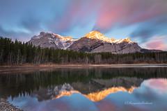 Golden Peaks (Margarita Genkova) Tags: sunrise wedge pond alberta kananaskis colors clouds nature reflections gold peaks rocks