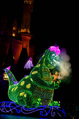 IMG_0867 (kattwyllie) Tags: tokyodisney tokyodisneyland dreamlights tokyodisneyelectricalparade electricalparade disneyselectricalparade churro tokyodisneyresort tangled aladdin petesdragon disneyperformer facecharacter disneyprincess