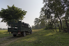 Jeep Safari at Chitwan National Park