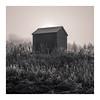 Shelter (Dylan Nardini) Tags: morning november scotland winter mist frost clydevalley 2016 landscapes light snow