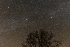 Winter Night Sky (Kevin VanEmburgh Photography) Tags: kevinvanemburghphotography missouri nature nikon outdoors outside travel stars starrynight astrophotography astro milkyway colecamp mo missourisky