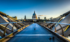Morning Light (georgeplakides) Tags: red milleniumbridge london stpauls cathedral earlymorning goldenhour pigeons birds