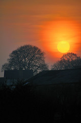 Sunset. By R J Watson (Ray~Watson) Tags: uk trees sunset sky orange sun sunlight nature beautiful yellow clouds landscape star evening march nikon warm shadows village natural zoom dusk setting tamron tones powerful staffordshire armitage 2012 tonal d7000 18270mm