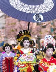 Oiran Dochu -  (ajpscs) Tags: tokyo japan ajpscs nippon  japanese   nikon d300  asakusa ichiyozakurakomatsubashi dori  oirandouchu  ichiyouzakuramatsuri festival matsuri parade procession oiran  tayuu   yjo  highclass courtesan prostitute edo16001868 yoshiwarapleasure entertainer patronise geta komageta mitsuashi sanmaibageta skill hachimoji hairstyle obi pins combs kimono complex servants edo yoshiwara courtesan    10  flickraward