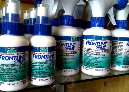 Frontline Spray to get rid of ticks on your dogs