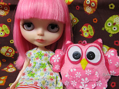 Pixie and the owls