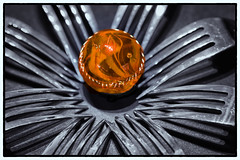 143 of 365 - Fork Flower (fuscinulam flos) (fearghal breathnach) Tags: shadow orange abstract flower macro silver blackwhite creative surreal fork marble cutlery colorpop tabletopphotography
