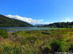 Loch Pityoulish (Rick Ellerman) Tags: water digital landscape scotland scenic picasa scottish finepix fujifilm loch dslr cairngorm cairngorms cairngormnationalpark lochpityoulish pityoulish hs30 hs30exr