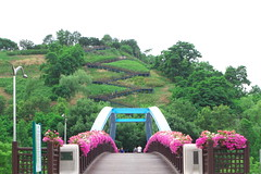 Haneul Park 001 (travel oriented) Tags: park korea array  skypark