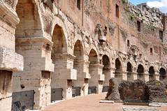 Inside the Colosseum (Crumblin Down) Tags: city trip italy jason rome roma love ice church water fountain silhouette statue architecture night underground flow italian italia tour marcus roman stadium walk basilica forum egg columns steps smooth pantheon cream carving molding ceiling colosseum cobblestone spanish trevi gelato dome obelisk column flowing guide marble piazza roads pillars michelangelo moulding stroll fontana dart spagna aurelius gladiator colosseo stadio trevis 2013 spanga magrippa spiehler walksofitaly