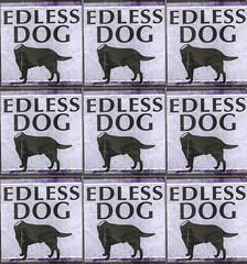 senzatesta 001 (eldiabulo -ED- stencil) Tags: senzatesta