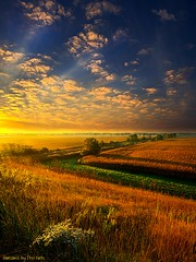 Absesne of Words (Phil~Koch) Tags: morning flowers blue autumn winter sunset red portrait orange sun snow storm flower green fall love ice nature floral field leaves rain yellow vertical wisconsin clouds sunrise season photography landscapes office spring twilight peace wind earth farm horizon scenic meadow inspired naturallight farmland photograph envir