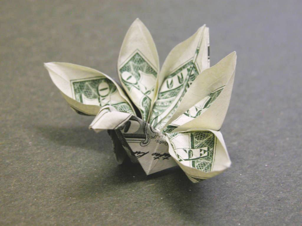 The World's Best Photos of origami and orikane - Flickr ... - photo#21
