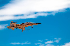 Tiger II Landing (http://fineartamerica.com/profiles/robert-bales.ht) Tags: show sky berlin speed plane airplane switzerland moving travels fighter technology power swiss space aircraft aviation military air events misc tiger transport flight jet engine exhibition airshow international transportation editorial vehicle marines airports airforce airborne f5 defense aero aerospace aerobatic aeronautics warfare synchronize northrop patrouille yumaairshow tigerii northropf5etigerii robertbales airshow2015