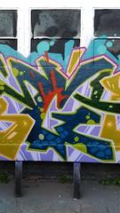 20150514_192457 (bg183tatscru@hotmail.com) Tags: train canvas artists mta 1980 spraycan tatscru southbronx graffititrain bg183 muralkings graffiticanvas bestartists bestgraffiti graffiticanvases bg183tatscru