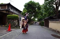 またお会いしましょう、舞妓!- Mata o ai shimashou, maiko! (*See you, Maiko!) (Thaís Medina) Tags: street japanese cool kyoto walks afternoon surreal loveit maiko geisha surprise unicorn meetings inlove discovering lovejapan