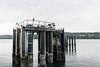 _DSC3139 (marilynwe) Tags: 2016 edmonds washington ferrylanding kingston sunrise water ferry