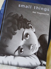 Small Things by Mel Tregonning (Moonteahouse) Tags: smallthings meltregonning art illustration wordless book bookstagram instabook beautifulbooks graphicsnovel picturebook childrensbook kidsbook mentalhealth mentalhealthawareness mentalhealthday