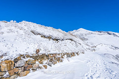 Harry_30970,,,,,,,,,,,,,,,,,Winter,Snow,Hehuan Mountain,Taroko National Park,National Park (HarryTaiwan) Tags:                 winter snow hehuanmountain tarokonationalpark nationalpark     harryhuang   taiwan nikon d800 hgf78354ms35hinetnet adobergb  nantou mountain
