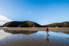 IMG_3650 (Schlueter1992) Tags: neuseeland2016urlaub abeltasmannationalpark tasman neuseeland