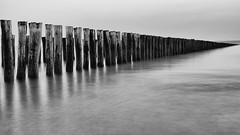 Zeeland Classics (1) (henrik_thiele) Tags: sw long exposure langzeitbelichtung zeeland zoutelande north sea nordsee haidand1 8 meer blackwhite