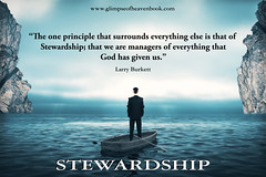 The One Principle that Surrounds Everything...Stewardship (GlimpseofHeavengirl) Tags: choices divinepotential glimpseofheaven god personalpotential personalpower personaltransformation principles purpose stewardship research concept business success strategy management forward pondering innovation idea creative cloudscape clouds hope light man white caucasian maze challenge wisdom opportunity goal thinking thoughtful skyline sky alone horizon mental work cliffs sea ocean male professional executive boss businessman surrounded cold foggy misty looking water nature young person russianfederation