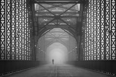 Alte Harburger Elbbrcke (digital_underground) Tags: fog mist bridge hamburg sonyalpha men harburg alteharburgerelbbrcke elbe brcke nebel europe germany
