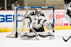 "Nailers_Royals_10-20-16-22 • <a style=""font-size:0.8em;"" href=""http://www.flickr.com/photos/134016632@N02/30464451025/"" target=""_blank"">View on Flickr</a>"