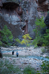 Narrow Wanderers (Ty_Pix) Tags: zionnationalpark znp nikon nikonphotography nature nationalparks utah utahoutdoor southernutah outdoor outdoors canyon