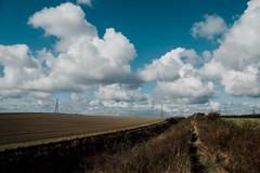 Devil's Dyke Walk-10 (adambowie) Tags: devilsdyke cambridgeshire newmarket