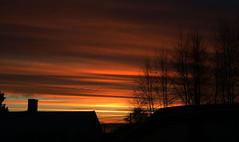Sunset 2012 (photosbysilje) Tags: heaven gjvik norway trees smoke